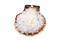 Sea salt in a shell Royalty Free Stock Photo