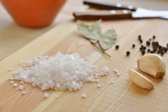Sea salt and spices Royalty Free Stock Photos