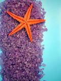 Sea salt and starfish Stock Photos