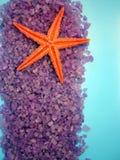 Sea salt and starfish Stock Photos