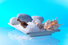 Sea salt with stones and shells Stock Image