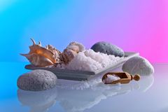 Sea salt with stones and shells . royalty free stock photos