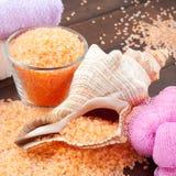 Sea salt, towel, bath sponge and shell Stock Photos