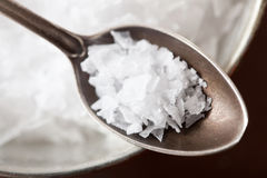 Sea salt in vintage spoon Stock Images