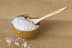Sea salt Royalty Free Stock Photo