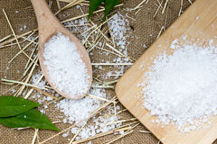 Sea salt in wooden spoon Royalty Free Stock Images