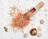 Sea salt in wooden spoon with sea shells and starfish Stock Photo