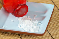 Sea Salts Stock Images