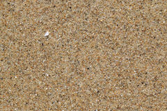 Sea sand Stock Image