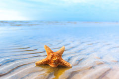 Sea Sand Stock Photo