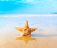 Sea Sand Royalty Free Stock Photo