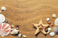 Sea, Sand, Coast, Beach, Seashells Royalty Free Stock Images