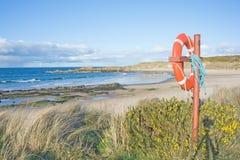 Sea, sand, and lifebuoy. Seascape of sea, beach, grass,  gorse and lifebuoy Stock Photo