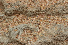 Sea sand and rock texture Royalty Free Stock Images