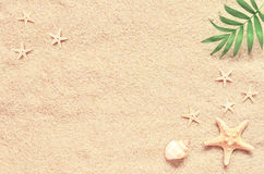 Sea sand with starfish and shells. Top view with copy space Stock Photos