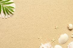 Sea sand with starfish and shells. Top view with copy space. Summer background stock image