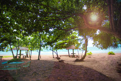 Sea sand and sun looking from beautiful and peaceful beach under big green tree. The beach has sitting area bench and little cocon. Ut huts little far behind is Stock Photo