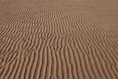 Sea sand surface Royalty Free Stock Photo