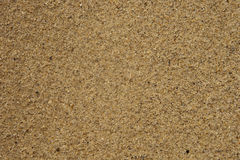 Sea sand texture. Texture of a wet gold fine sand on the beach Stock Photography
