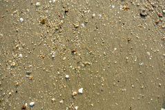 Sea Sand Texture Royalty Free Stock Images