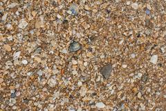 Sea sand texture made of shell and stone pieces. Royalty Free Stock Images