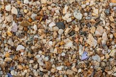 Sea sand texture made of shell and stone pieces. Seamless texture Royalty Free Stock Photos
