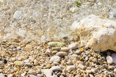 Summer background sea sand with wave royalty free stock photo