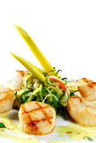 Sea Scallop Royalty Free Stock Image