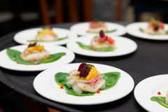 Sea scallop carpaccio dishes Royalty Free Stock Photo