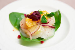 Sea scallop carpaccio in plate Royalty Free Stock Images