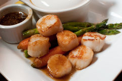 Sea Scallops. Plate of sea scallops in a teriyaki soy glaze with asparagus and carrots royalty free stock image