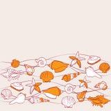 Sea  seamless pattern. Seashells sea  seamless pattern Royalty Free Stock Photo