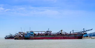 Sea Seeker Stock Image