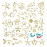 Sea set. Stingray, jellyfish, seaweed, fish, starfish, jellyfish, squid, crab, sea horse. Vector illustration.  on white b Royalty Free Stock Images