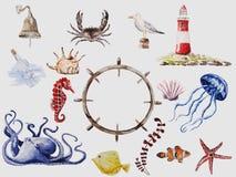 Sea set. Vector watercolor drawn sea animals set Royalty Free Stock Photos