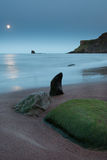 Sea shaped Rocks in Moonlight. A moonlit beach with some shiny rocks in the foreground with the waves lapping up on the shore at Saltwick Bay in Yorkshire Stock Images