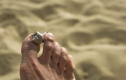 Sea shell. On fit finger with sand in the background royalty free stock images
