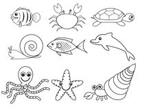 Sea and shell animals Royalty Free Stock Photo