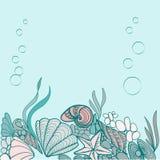 Sea shell background illustration Royalty Free Stock Photography