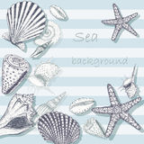 Sea shell background 5. Vintage sea shell background. Beautiful marine card with cockleshell and starfish Royalty Free Stock Photos