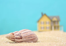 Sea Shell and Beach House Stock Photos