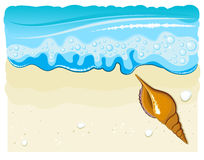 Sea shell on the beach with wave and sand Stock Photo