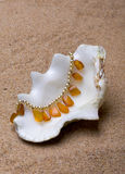 The sea shell with a  beads lies Royalty Free Stock Photo
