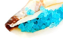 Sea shell with blue dead sea salt Stock Image