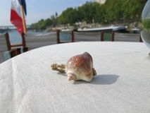 Sea shell on a boat Royalty Free Stock Image
