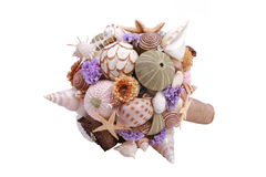 Sea shell boquet Royalty Free Stock Image