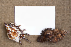 Sea shell border on burlap texture Stock Images