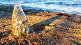 Sea Shell Bottle and Shadows in the Sand. Stock Image