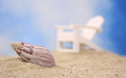 Sea Shell and Chair Royalty Free Stock Photos