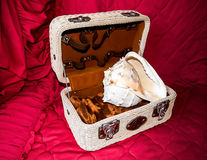 Sea shell in a chest. Sea shell in a wicker chest Royalty Free Stock Image